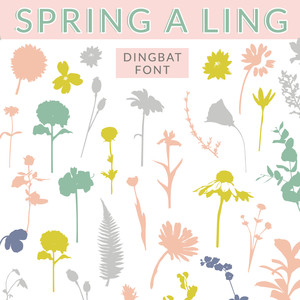 spring a ling floral dingbat font by angie makes