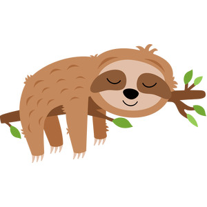 sloth sleeping in tree
