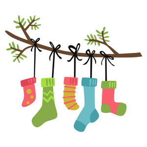 stockings on branch