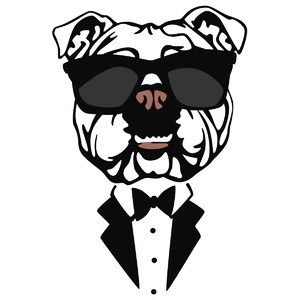 bulldog in tux with shades