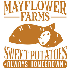mayflower farms sweet potatoes