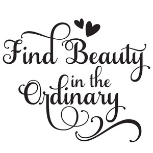 find beauty in the ordinary