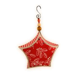 ornament 3d star curved sides