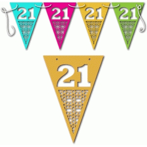 21st birthday bunting female