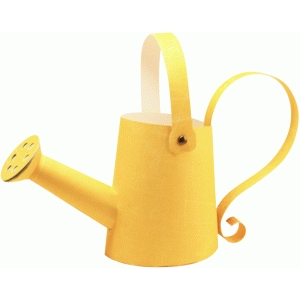 3d watering can