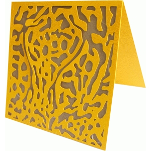 cheetah print card