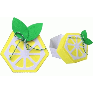 citrus favor box