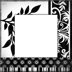 black and white frame 1