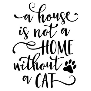 a house is not a home without a cat phrase