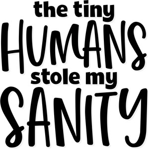 the tiny humans stole my sanity
