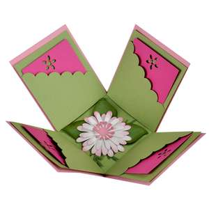 floral explosion box