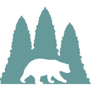 bear and pine trees
