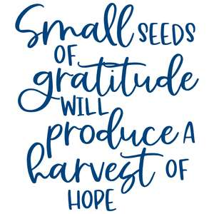 small seeds of gratitude