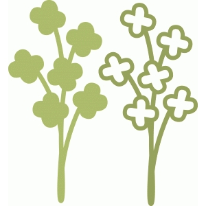 clover or blossom twig