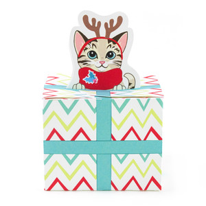 tabby cat christmas present box