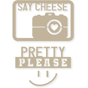 4x6 'say cheese please' life card