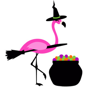 flamingo witch