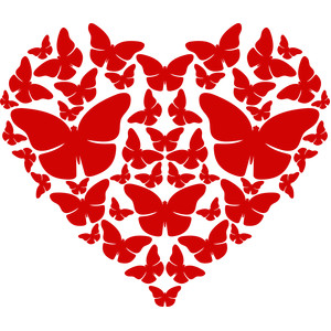 butterflies heart