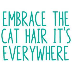 embrace the cat hair it's everywhere