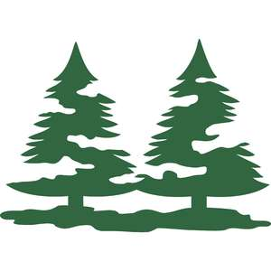 pine trees with snow