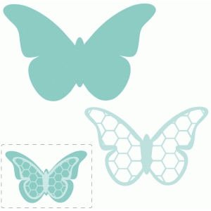 hexagon layered butterfly