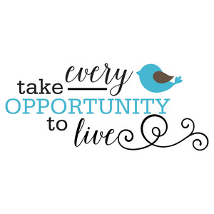 take every opportunity quote