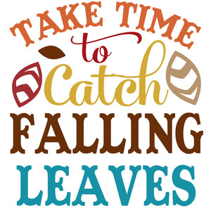 take time to catch falling leaves