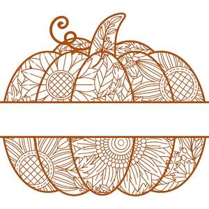 split pumpkin zentangle