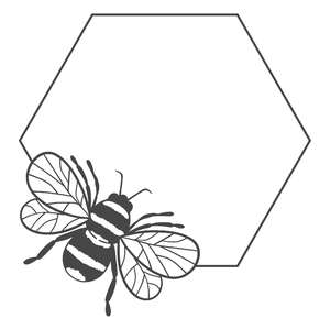 bee hexagon frame