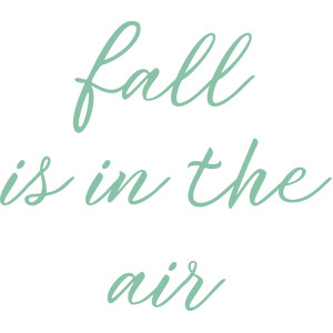 fall in is the air