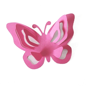 3d pop out butterfly