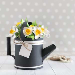 watering can box with 3d daffodils