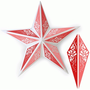 rose metal star decor