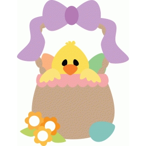 cute chick in basket