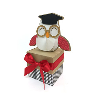 degree owl box