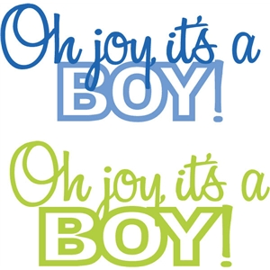 joy it's a boy phrase
