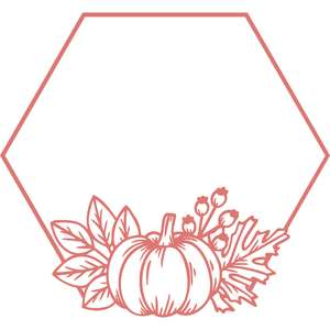 pumpkin hexagon frame