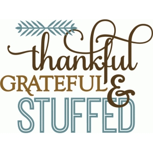 thankful grateful stuffed - phrase