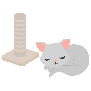 sleeping cat with scratching post