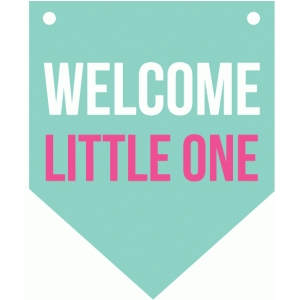 welcome little one banner