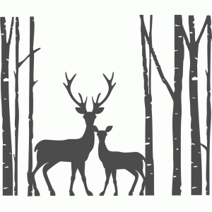 birch trees with deer family