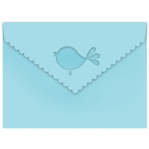 chirp envelope