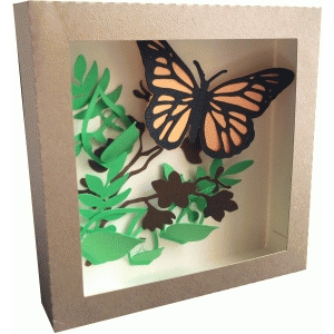 monarch buttefly shadow box