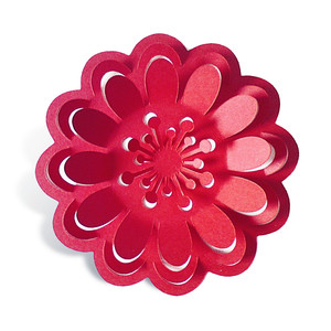 3d pop out petals flower