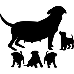mother dog with puppies silhouette