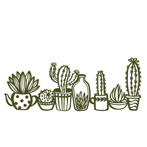 cactuses and succulents border
