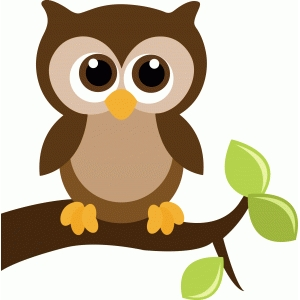 cute owl on a tree branch with leaves