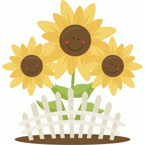 cute sunflower group