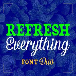 refresh everything font duo