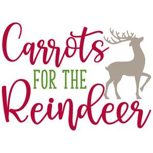 carrots for the reindeer